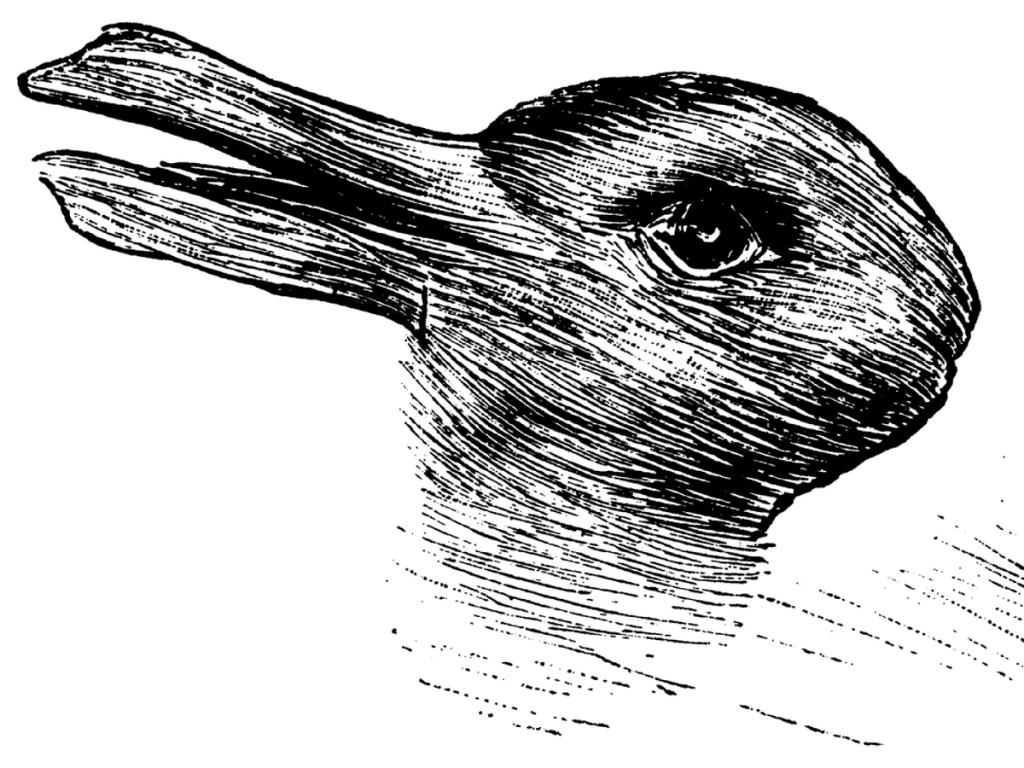 Customer Pain Points Duck Rabbit