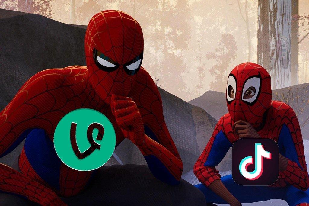 TikTok vs Vine Social Media Platform